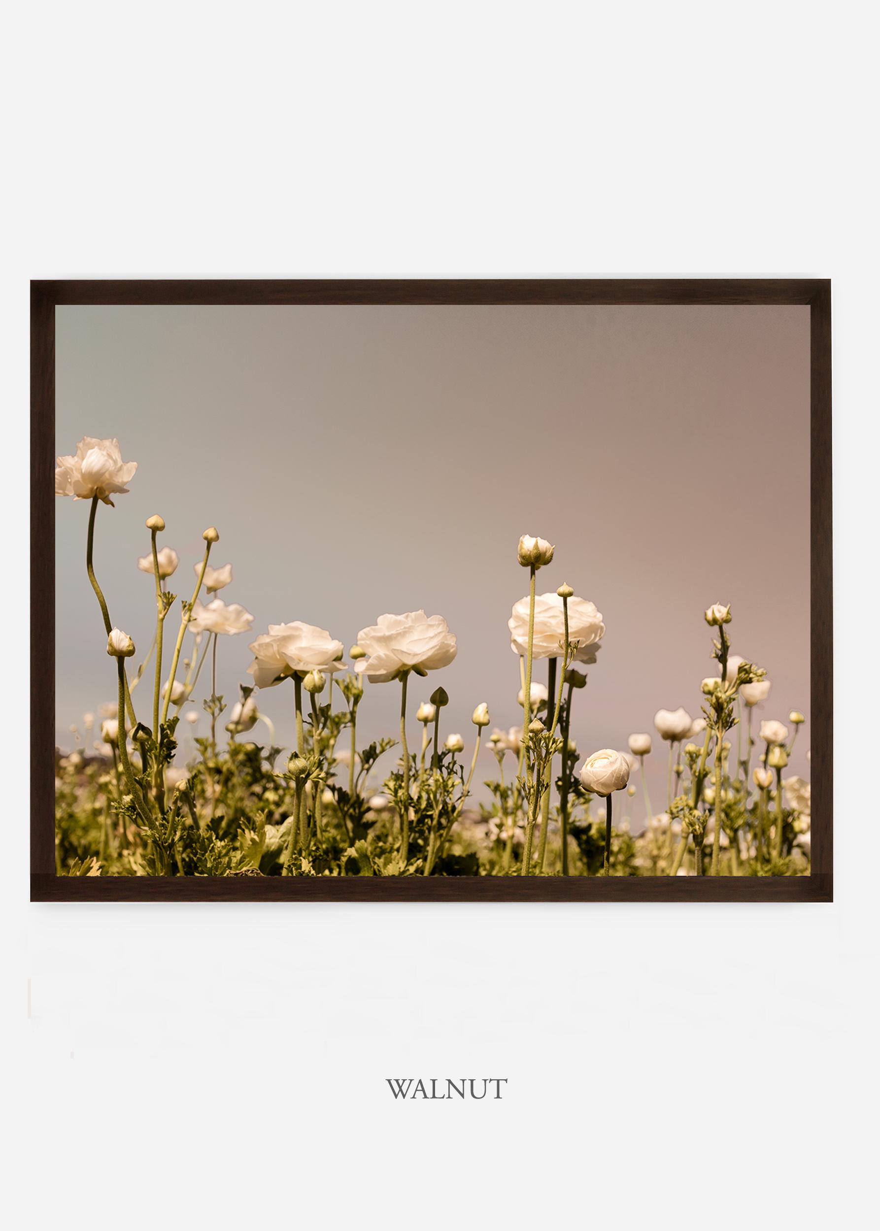 NoMat-Walnut-Frame-flora-6-Wilder-California-Art-Floral-Home-decor-Prints-Dahlia-Botanical-Artwork-Interior-design.jpg