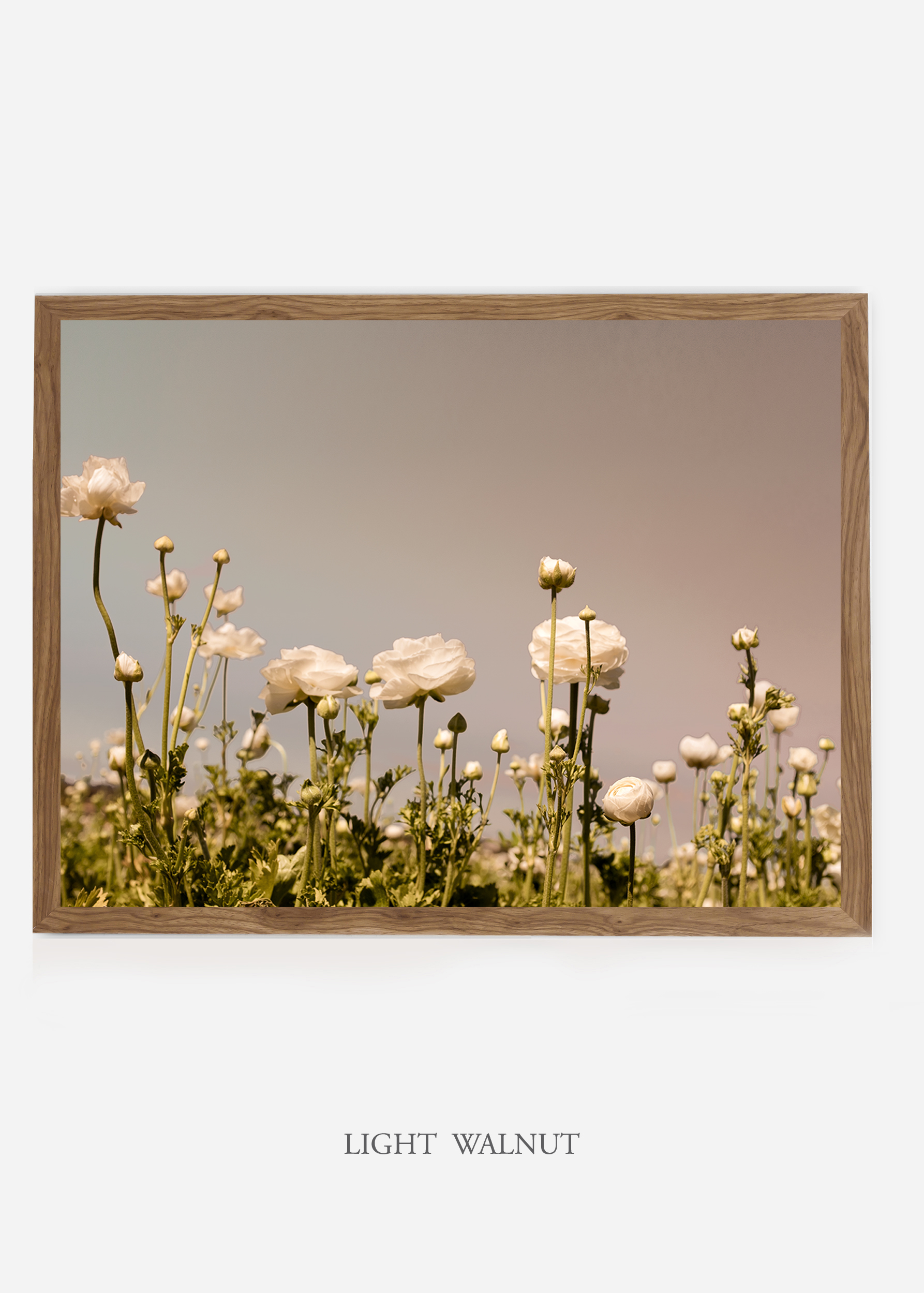 NoMat-LightWalnutFrame-DahliaNo.6-Wilder-California-Art-Floral-Home-decor-Prints-Dahlia-Botanical-Artwork-Interior-design.jpg