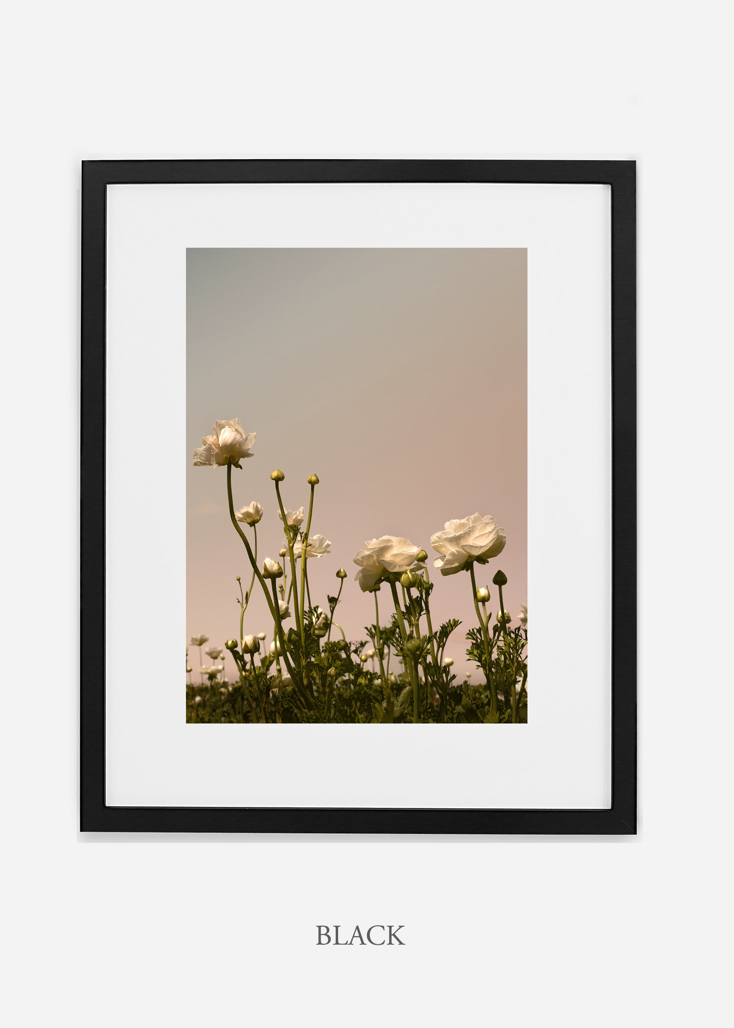 FloraNo.7-black-frame_mat-interiordesign-botanicalprint-art.jpg