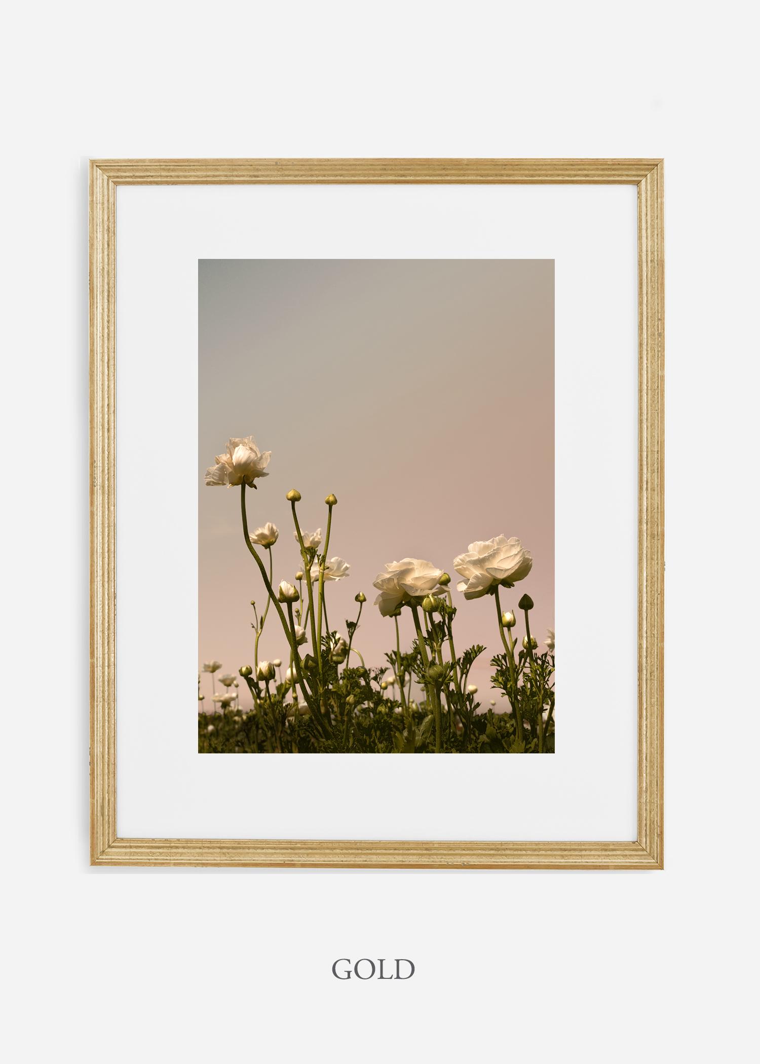 FloraNo.7-light-gold-frame_mat-interiordesign-botanicalprint-art.jpg