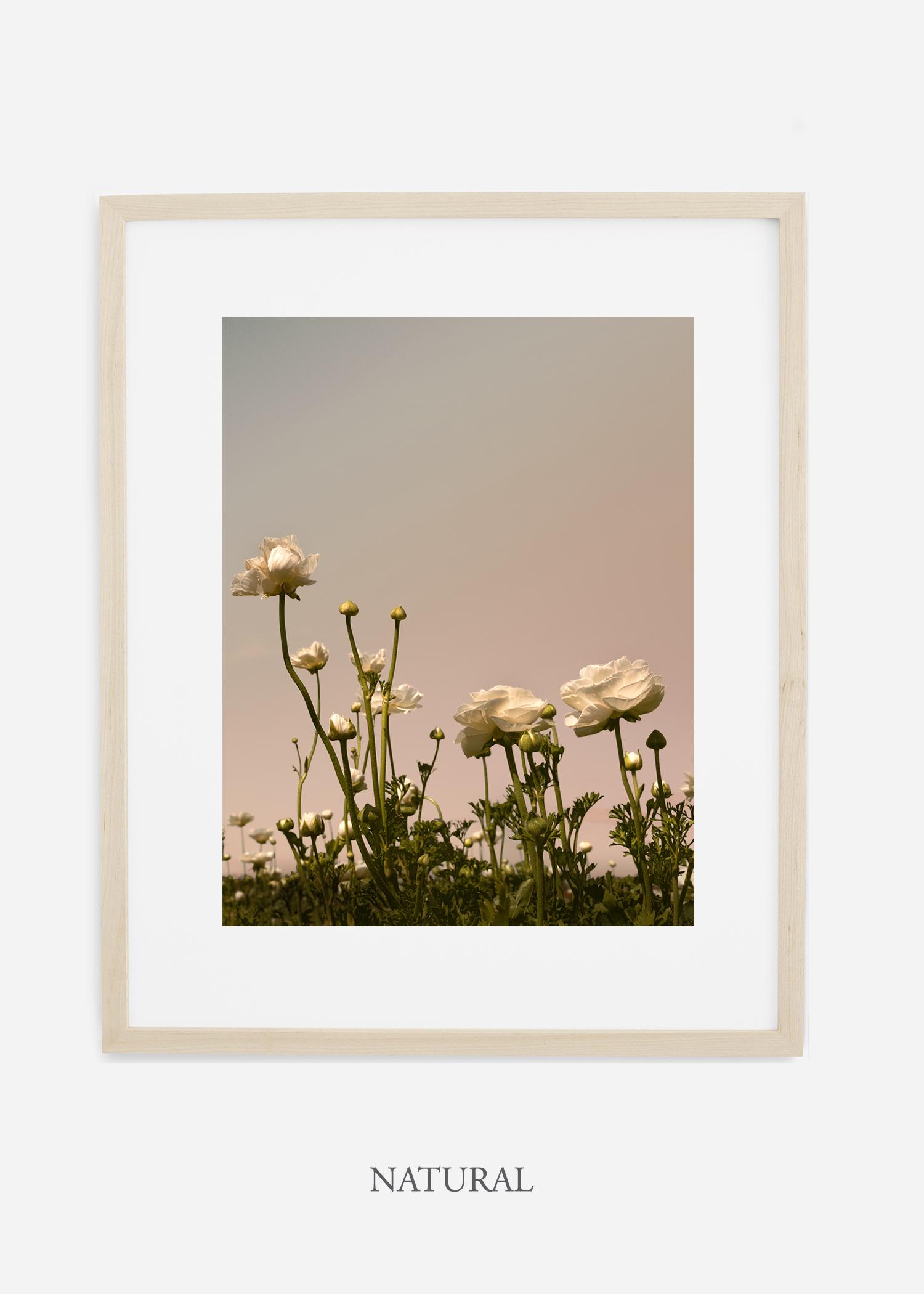 FloraNo.7-light-nautral-frame_mat-interiordesign-botanicalprint-art.jpg