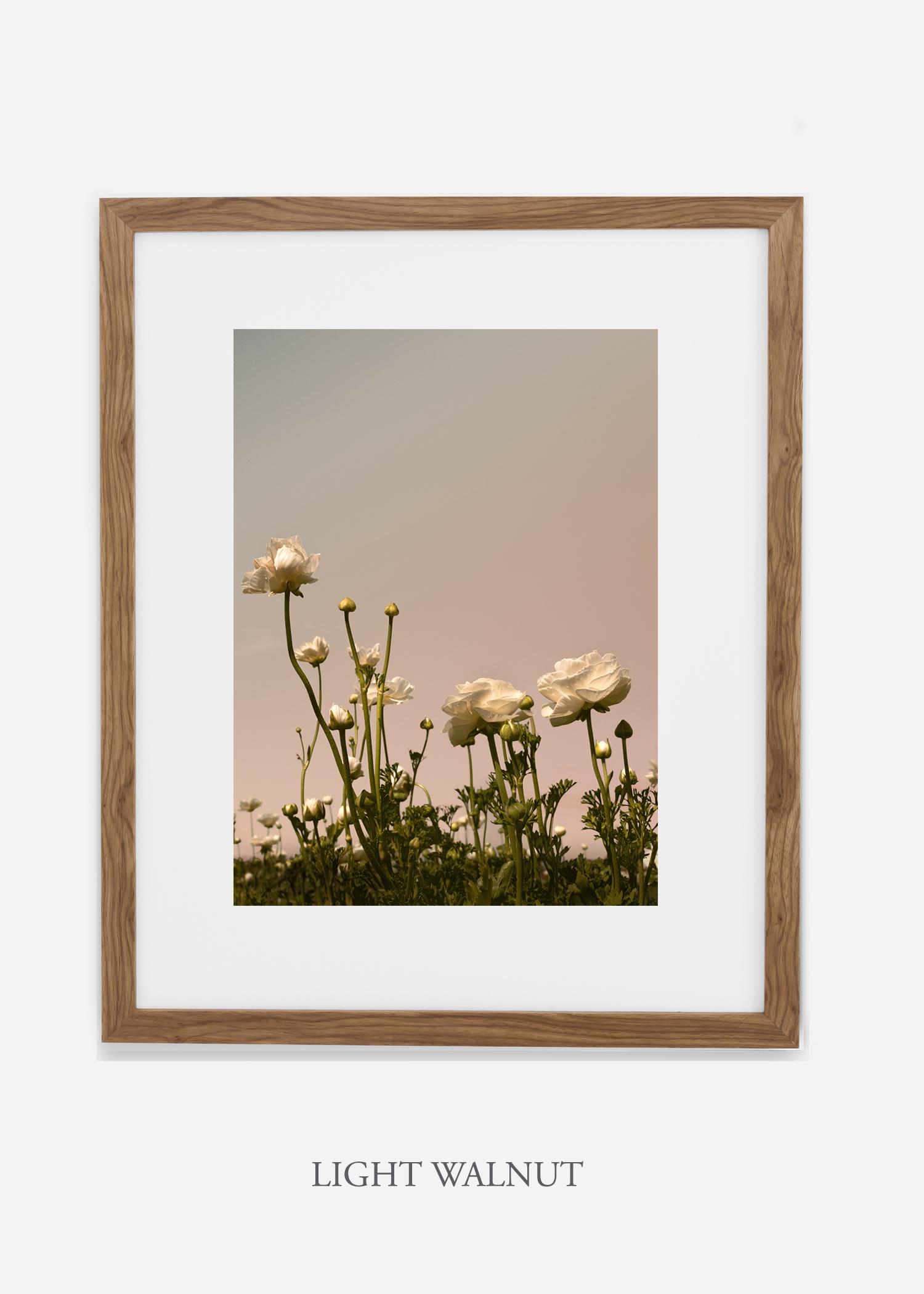 FloraNo.7-light-walnut-frame_mat-interiordesign-botanicalprint-art.jpg