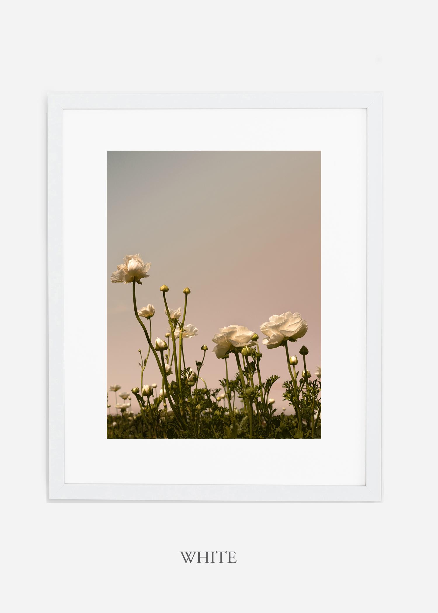 FloraNo.7-white-frame_mat-interiordesign-botanicalprint-art.jpg