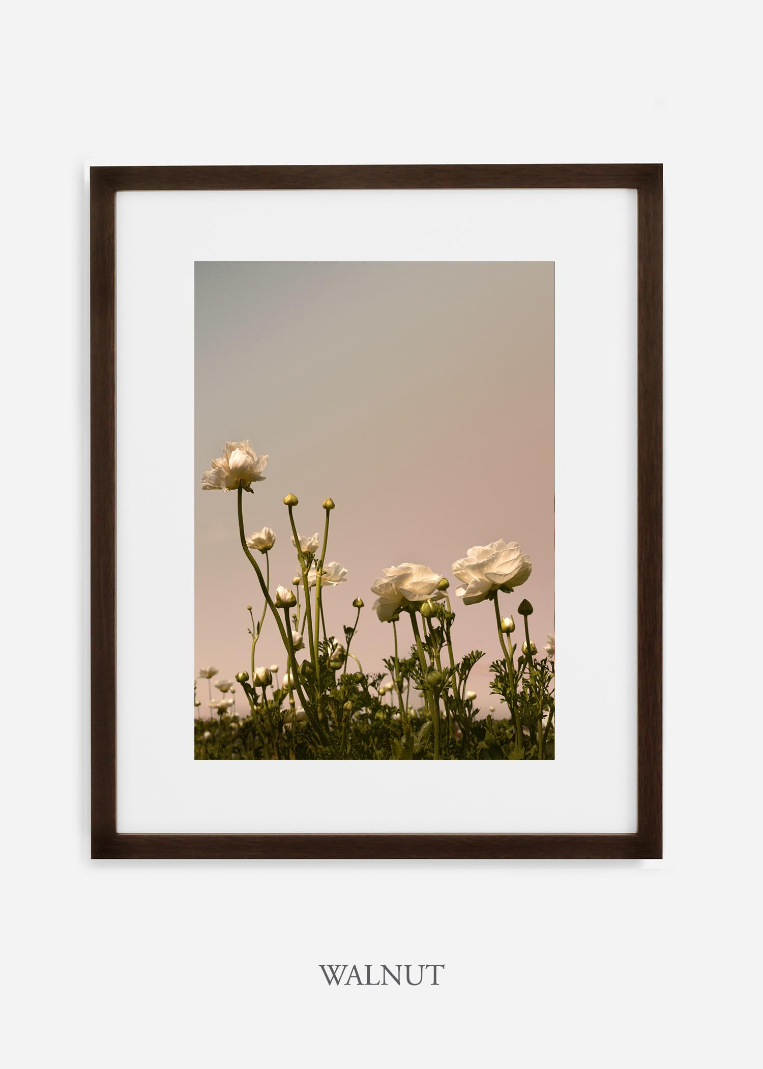 FloraNo.7-walnut-frame_mat-interiordesign-botanicalprint-art.jpg