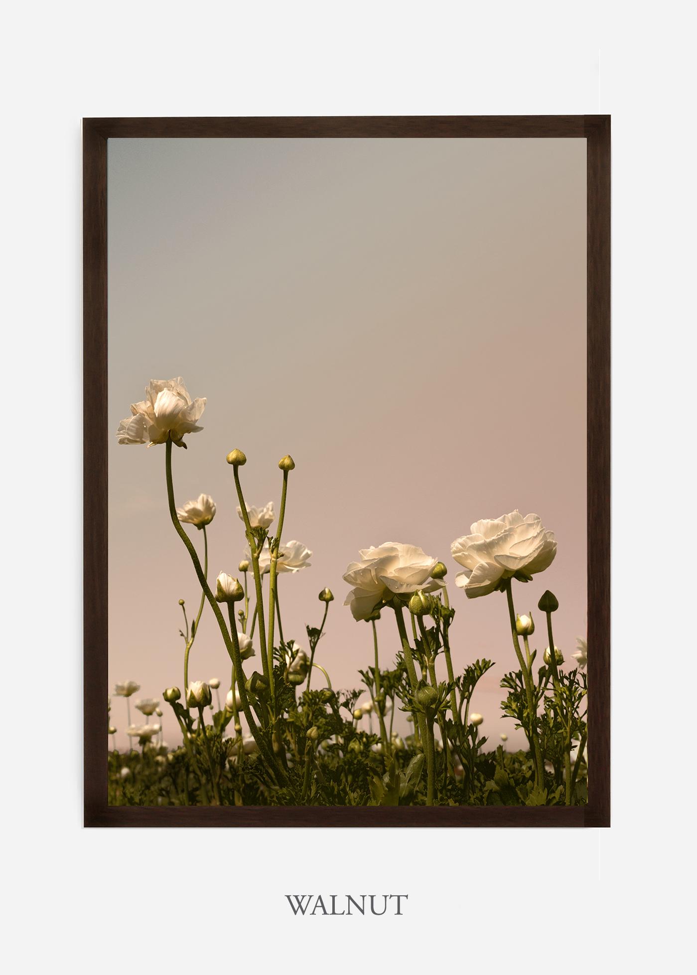 NoMat-Dark_Walnut-Frame-Floral-No-7-Wilder-California-Art-Floral-Home-decor-Prints-Dahlia-Botanical-Artwork-Interior-design.jpg