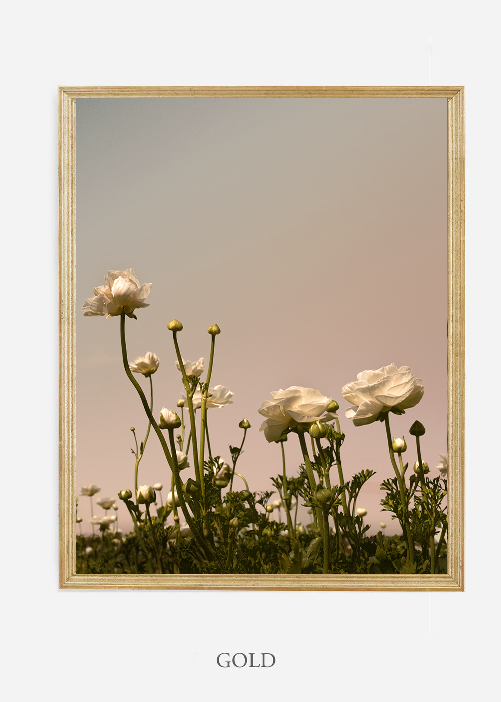 NoMat-Gold-Frame-Floral-No-7-Wilder-California-Art-Floral-Home-decor-Prints-Dahlia-Botanical-Artwork-Interior-design.jpg