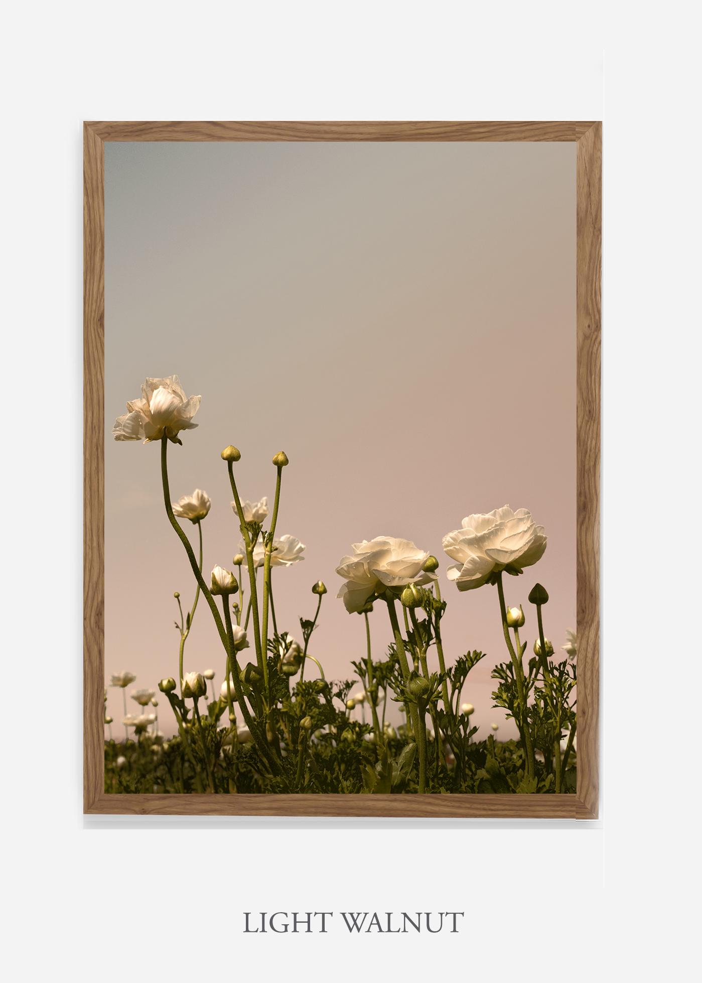 NoMat-Light-Walnut-Frame-Floral-No-7-Wilder-California-Art-Floral-Home-decor-Prints-Dahlia-Botanical-Artwork-Interior-design.jpg
