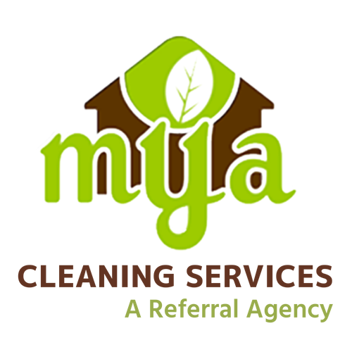 Cleaning Services (2).png