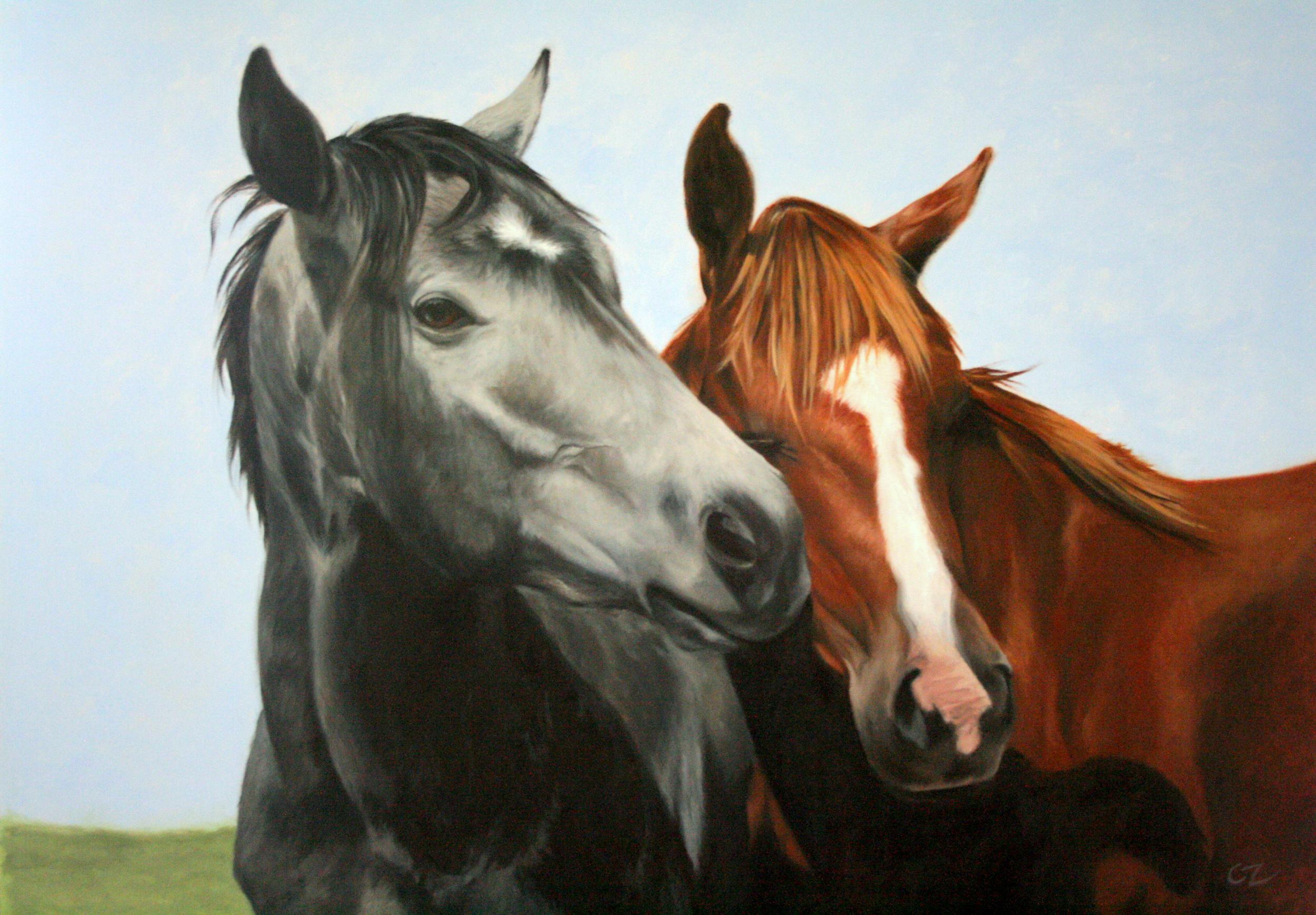 curtiss_horseslarge_330dpi.jpg