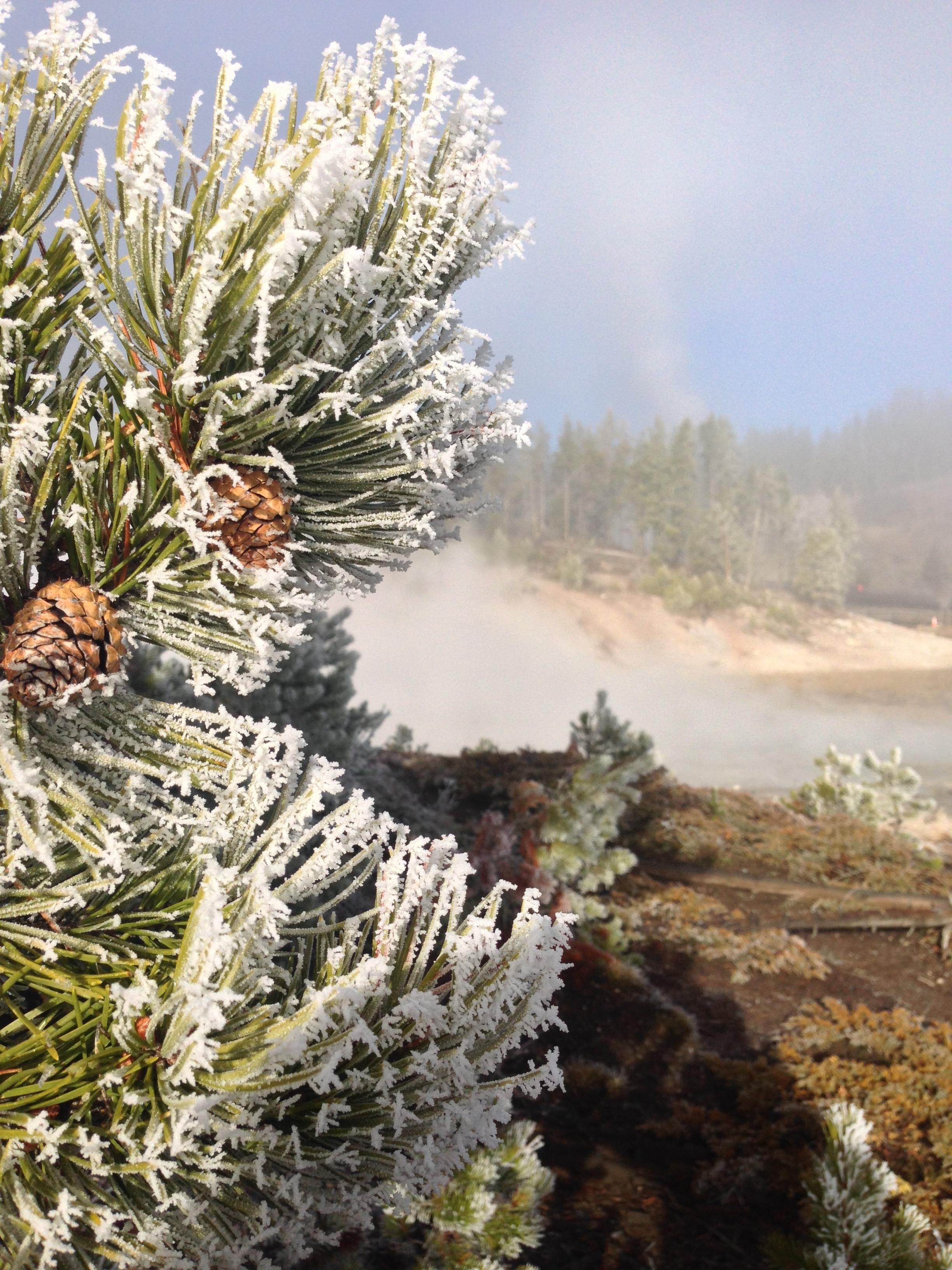 A frosty start