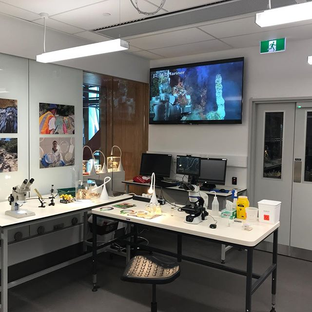 Set up for the Science open day at the new Ernest Rutherford Science Building. Microbiology in action! The video screen on the phase contrast microscope was a hit.