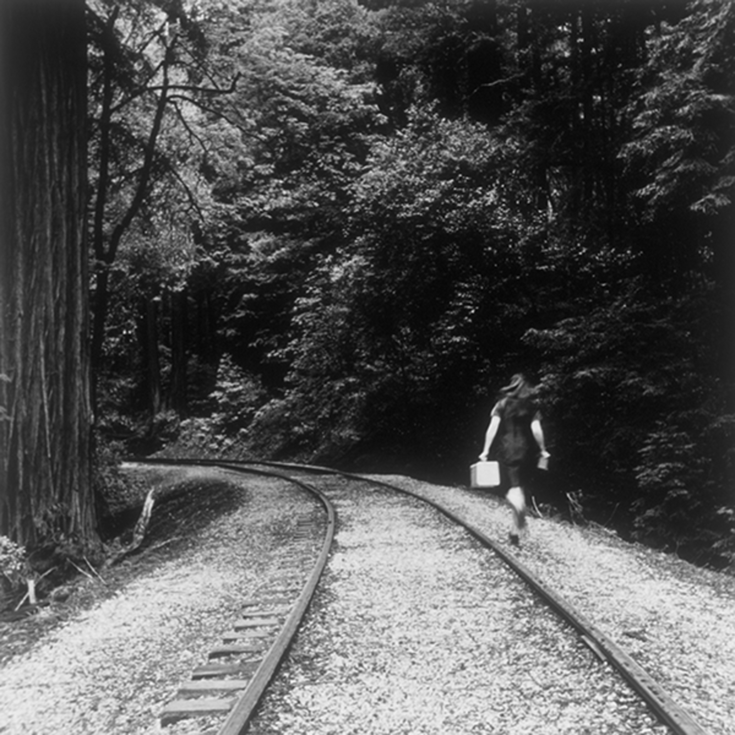 trainseries1.jpg