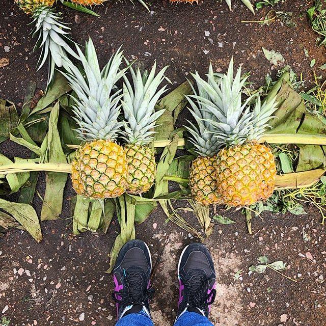 Ofelia Market #fromwhereistand #ofelia #mercado #pineapples #quito #ecuador