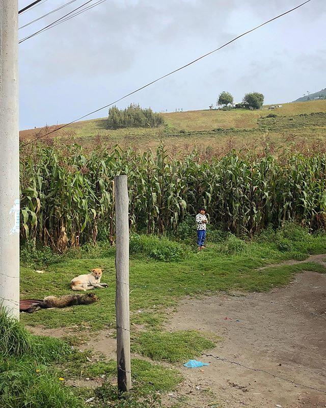 Corn Child #quito #ecuador #iphonography