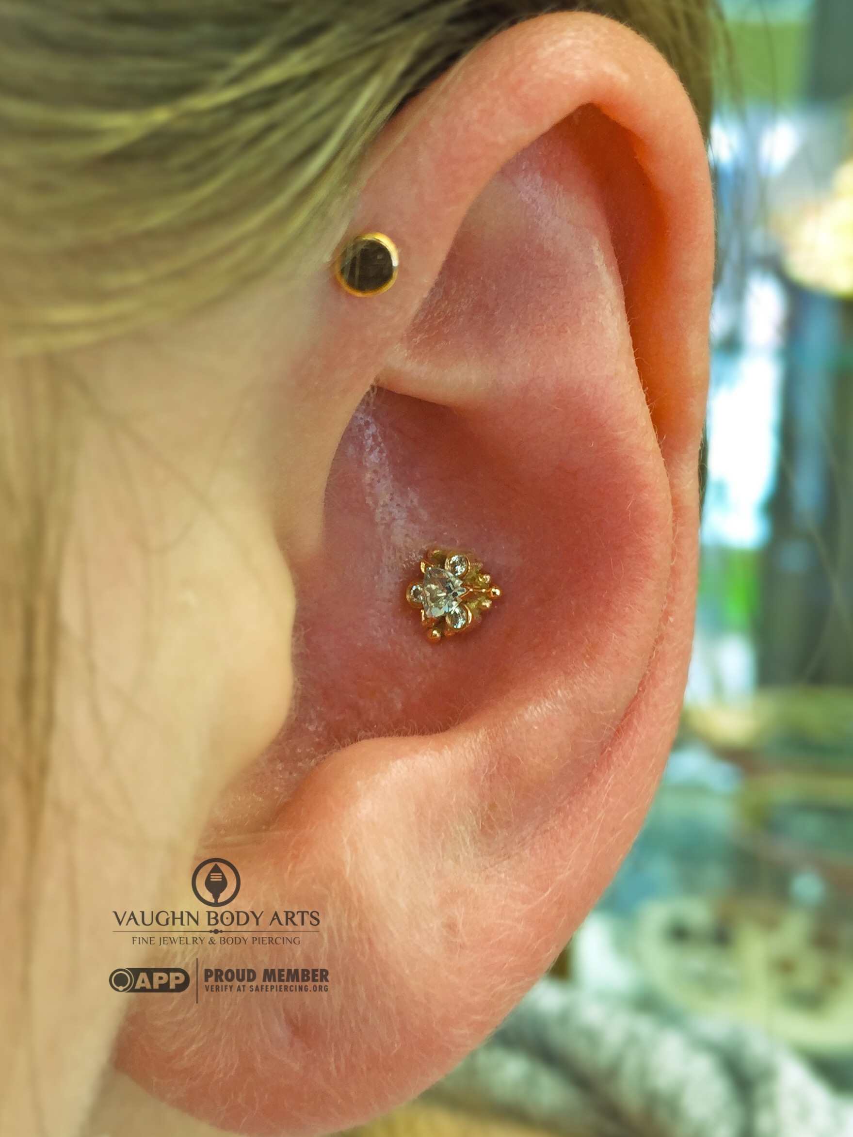 """Conch piercing with a 14k yellow gold """"Helena"""" end featuring genuine Aquamarine and cz's from BVLA."""