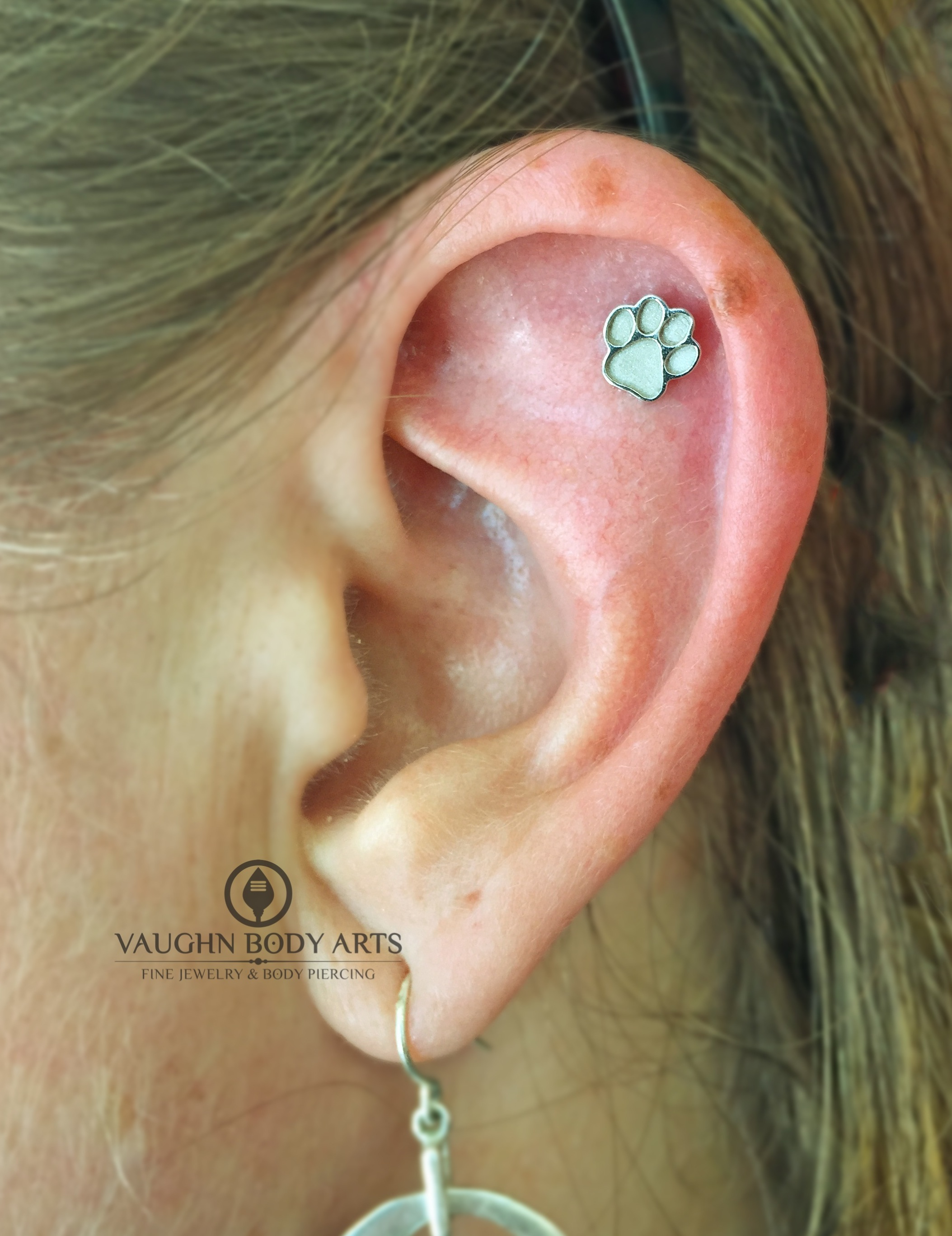 Helix piercing featuring a 14k white gold paw print end from BVLA.