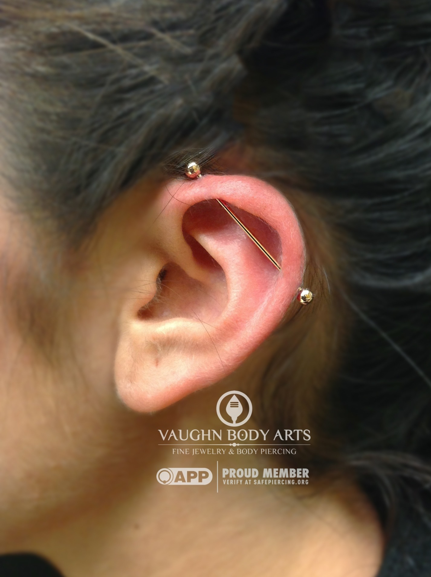Industrial piercing with an 18k rose gold barbell from Anatometal.