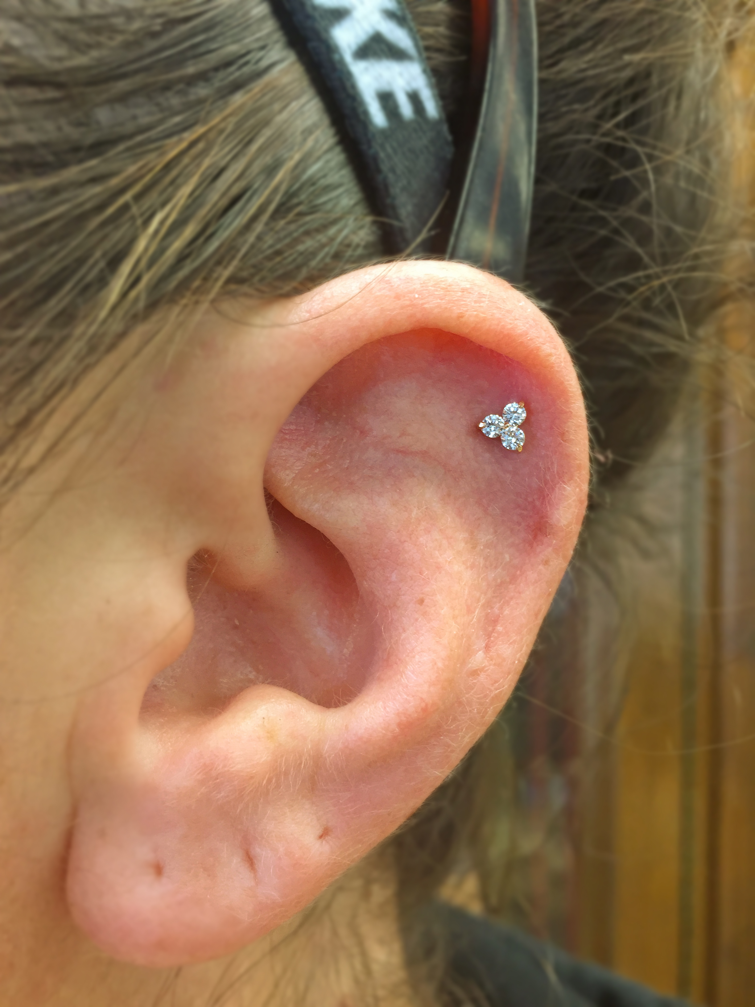 """Helix piercing with a 14k yellow gold """"Trinity"""" end from NeoMetal."""