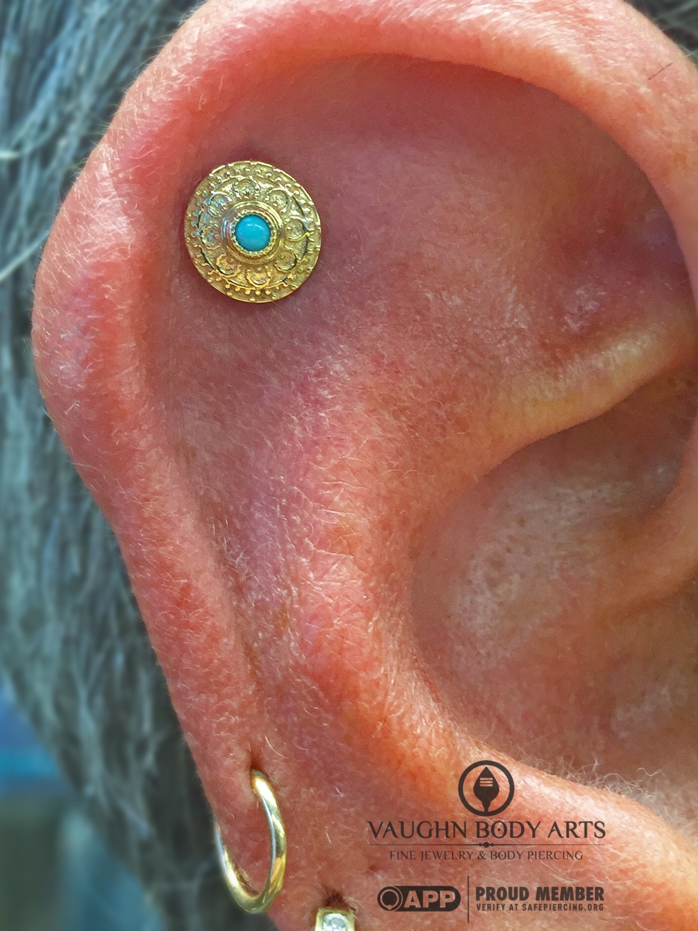 """Helix piercing featuring a 14k yellow gold and turquoise """"Nanda"""" end from BVLA."""