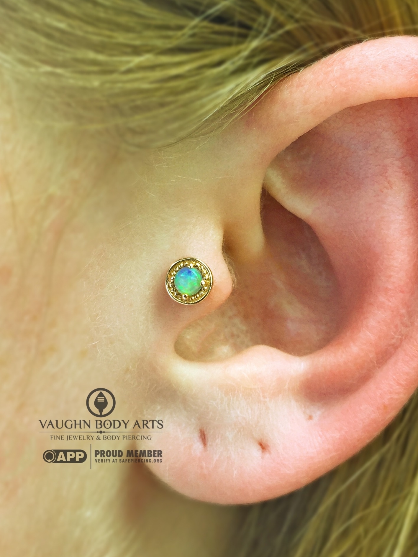 """Tragus piercing with a 14k yellow gold and opal """"Millgrain Prong"""" end from BVLA."""