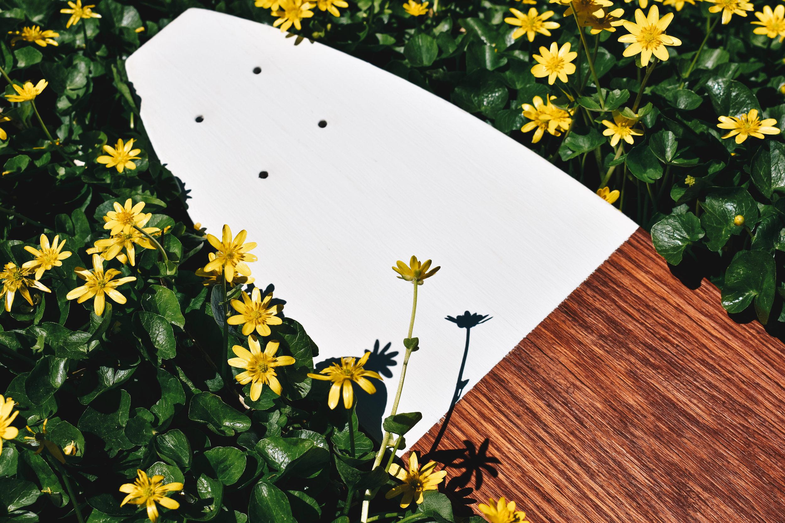 Panel Skateboards Flowers (1 of 1)-2.jpg