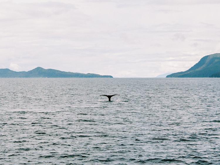 Alaska Blog Post-33