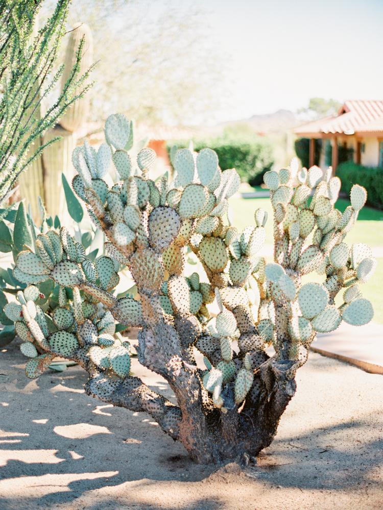 rancho de los caballeros wedding-21.jpg