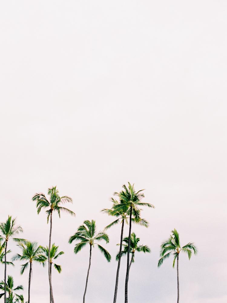 Mauna Kea Hawaii Wedding-69.jpg