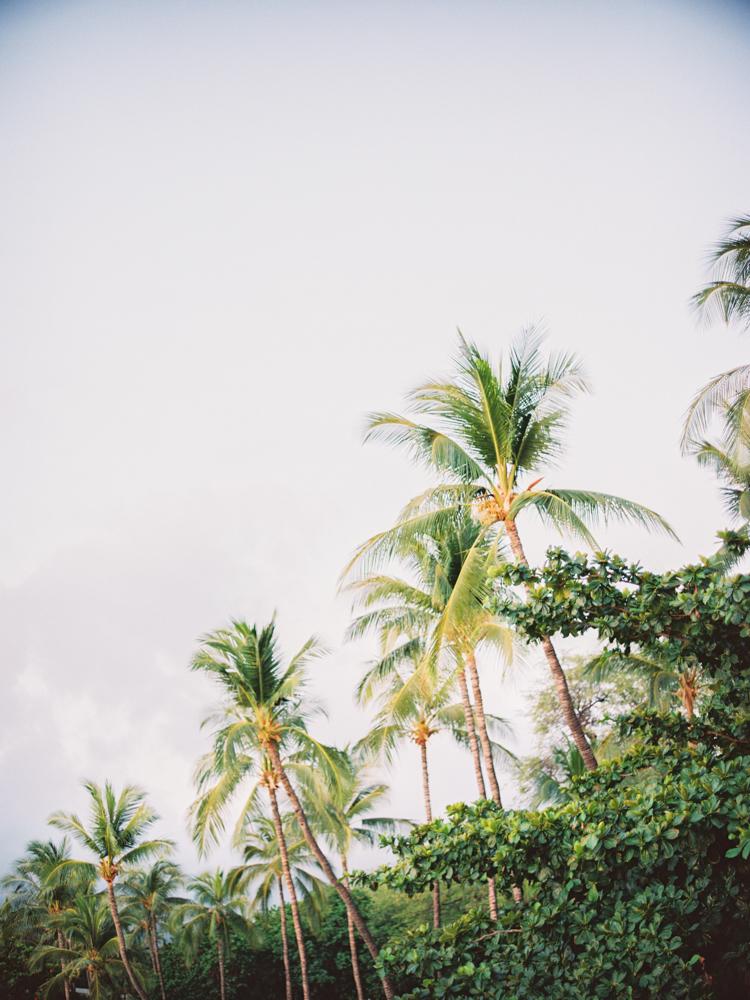 Mauna Kea Hawaii Wedding-83.jpg