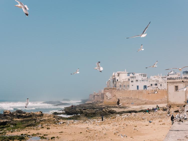 marrakech morocco-23.jpg