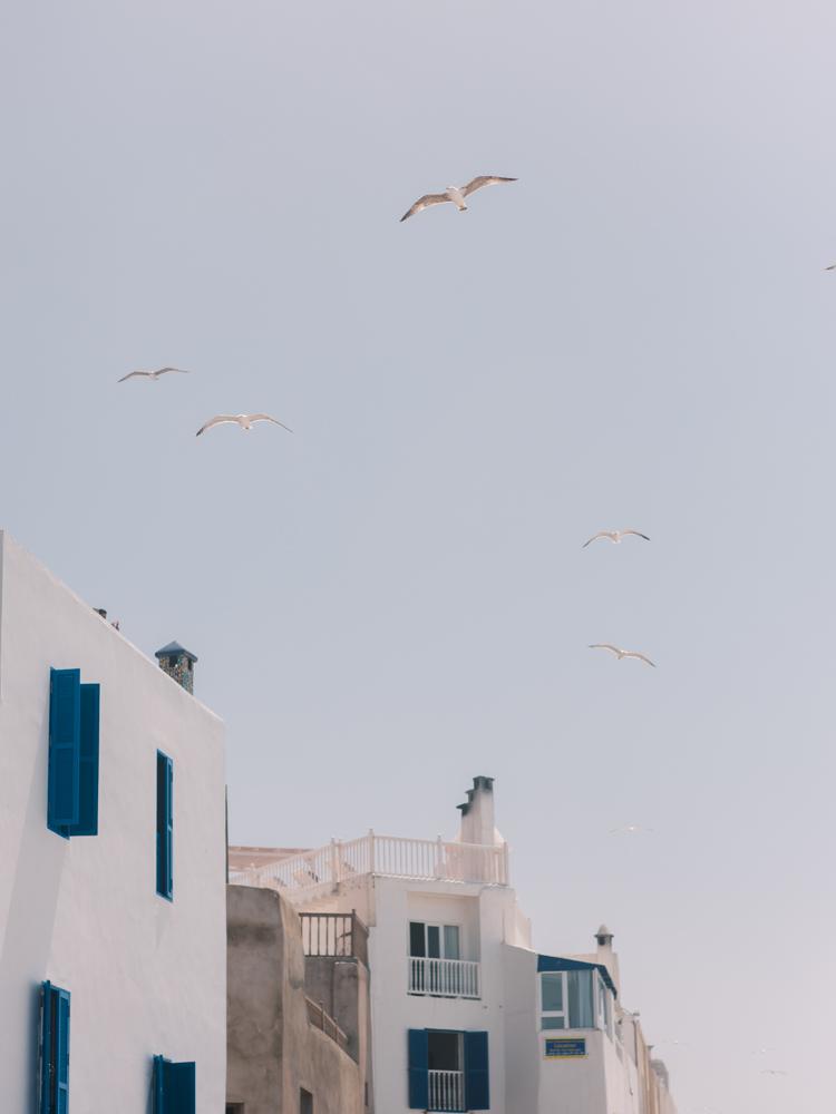 marrakech morocco-27.jpg