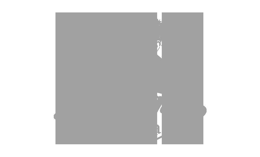 biggies pizza dunedin