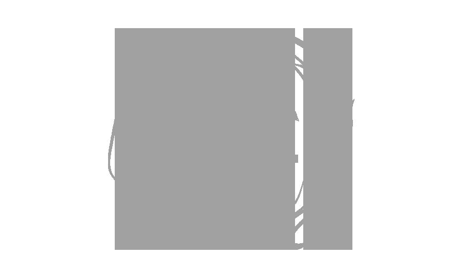 vault 21