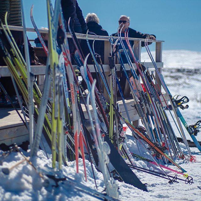 Ski parking