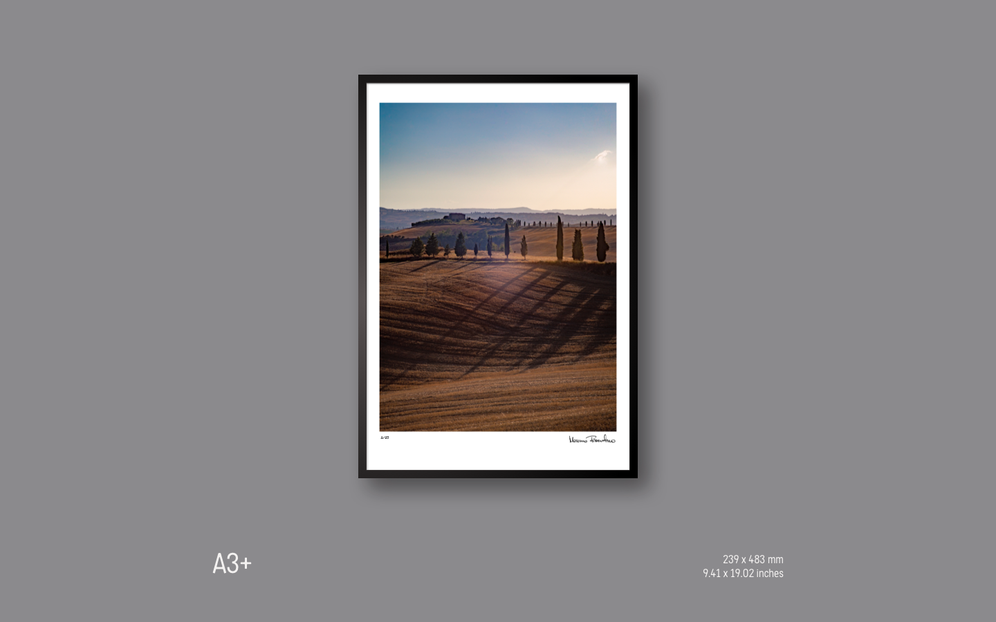 Image preview Standalone A3+.png