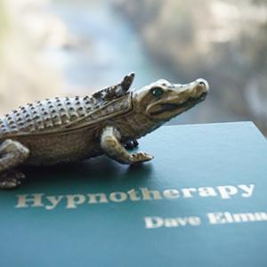 Formation de base OMNI - Êtes-vous intéressé à apprendre l'hypnose? Voulez-vous devenir Praticien en Hypnose ou simplement perfectionner et approfondir vos connaissances en hypnose? Apprenez à maîtriser les techniques les plus efficaces de l'hypnose moderne!L'apprentissage de l'hypnose avec la méthode OMNI de Gerald Kein est plus rapide et efficace que d'autres – le lendemain de votre diplôme vous pouvez commencer à rendre heureux vos clients.