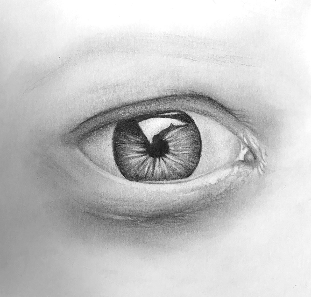draw-a-realistic-eye-step-08-more-texture-more-shading.jpg