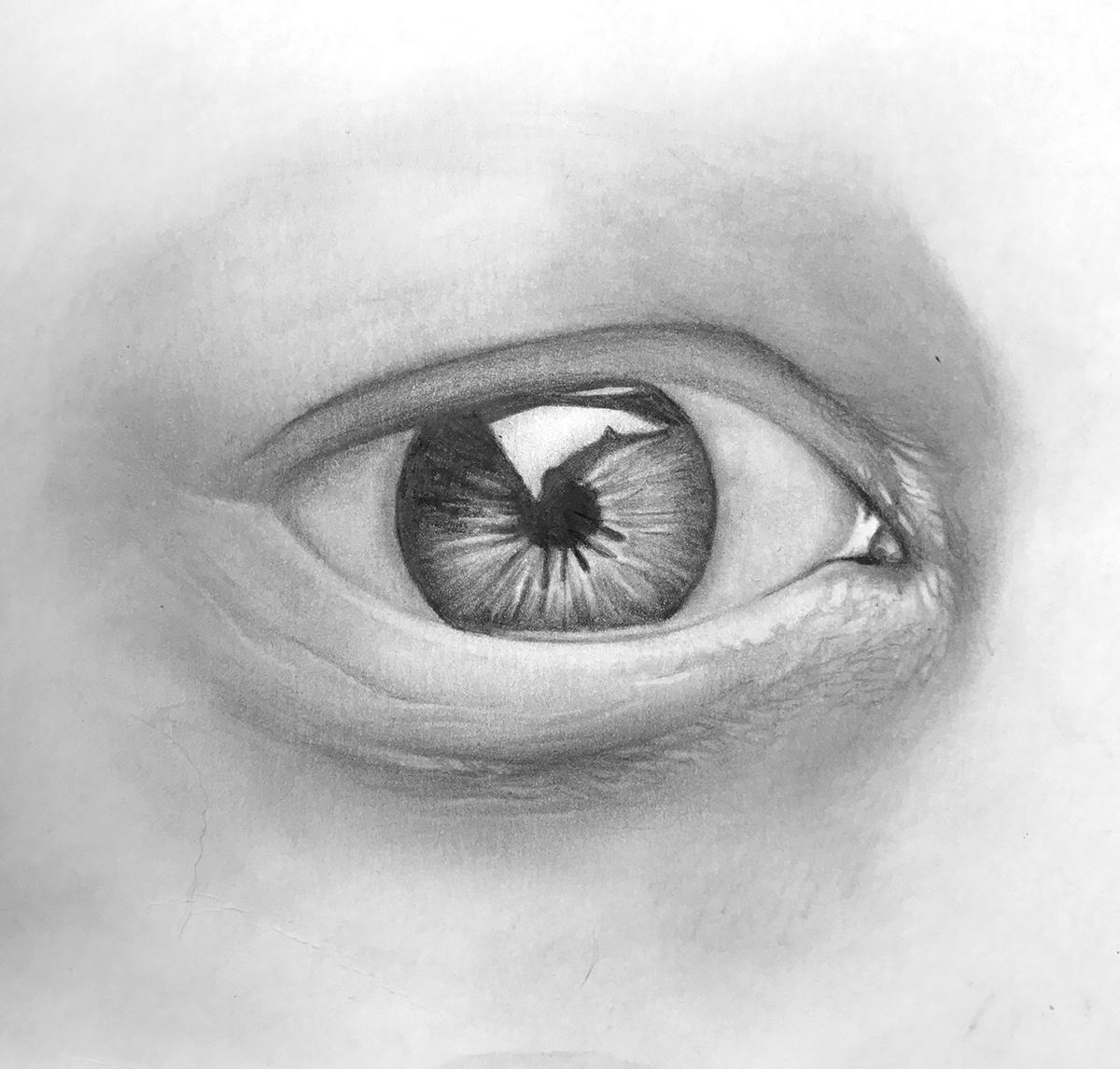 draw-a-realistic-eye-step-09-finer-details-more-shading.jpg