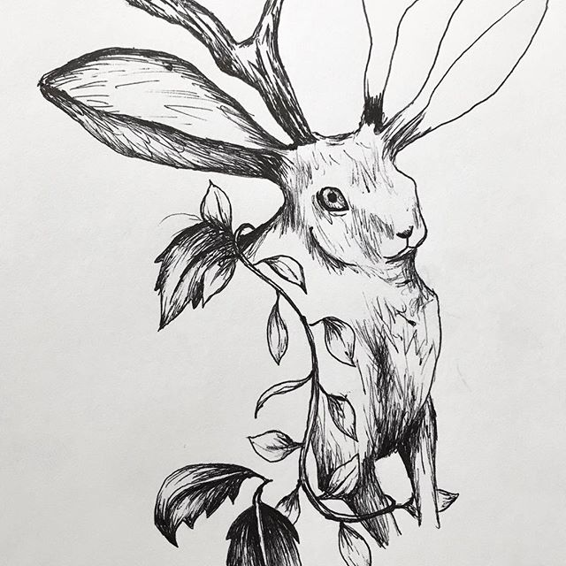 Lunchtime sketch (surprise it's another jackalope). Also accidentally made him super 'voluptuous' and because it's in pen he has to stay that way 😅