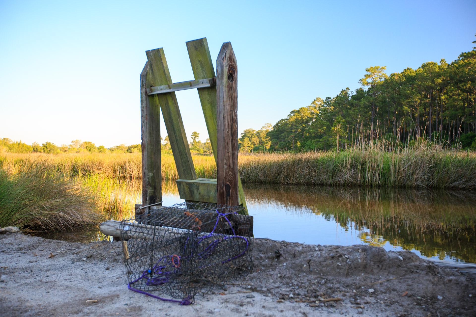 The Rice Gate & Marshlands