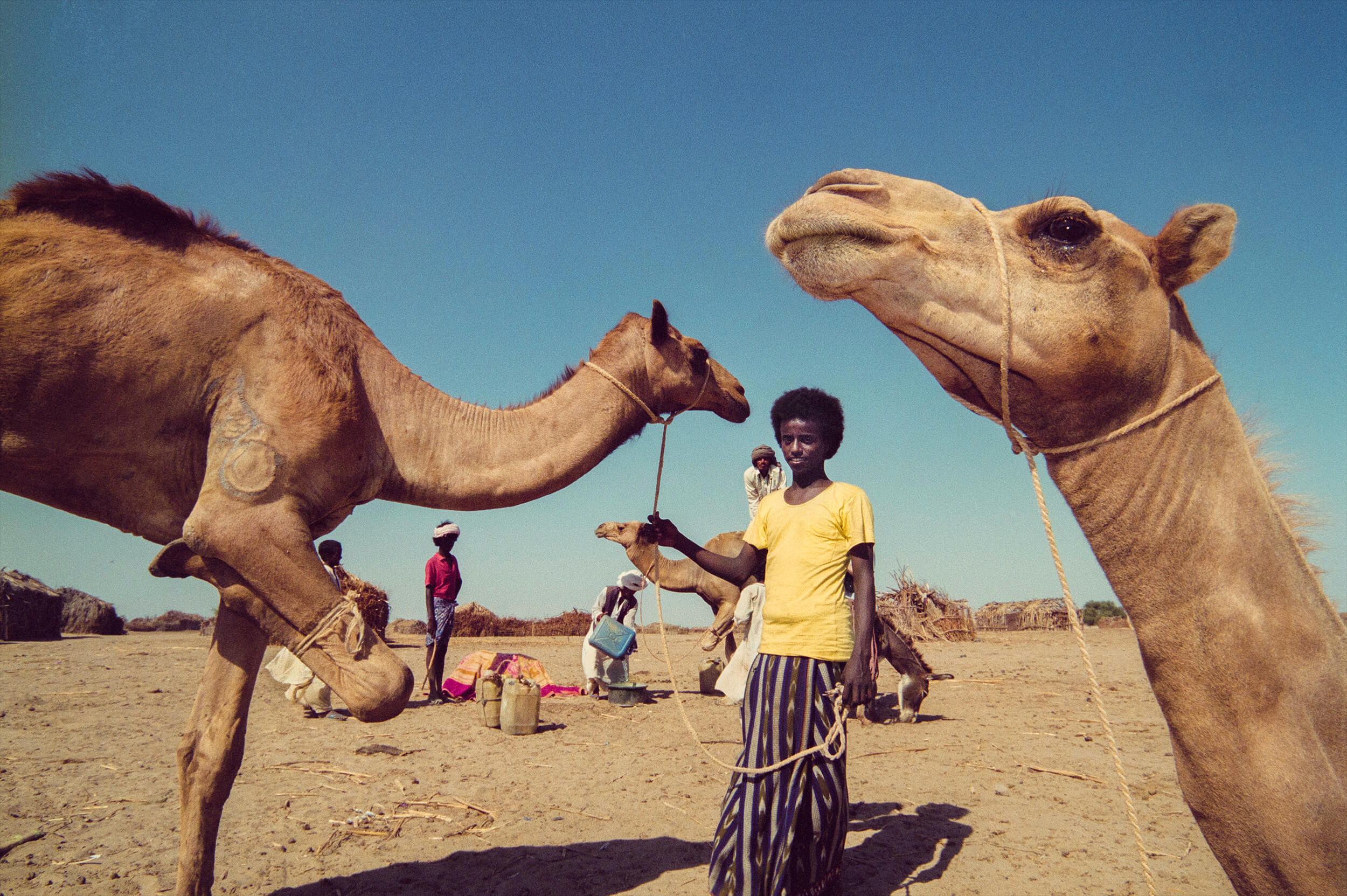 Ethnic group Rashaida in the Eritrean lowland.