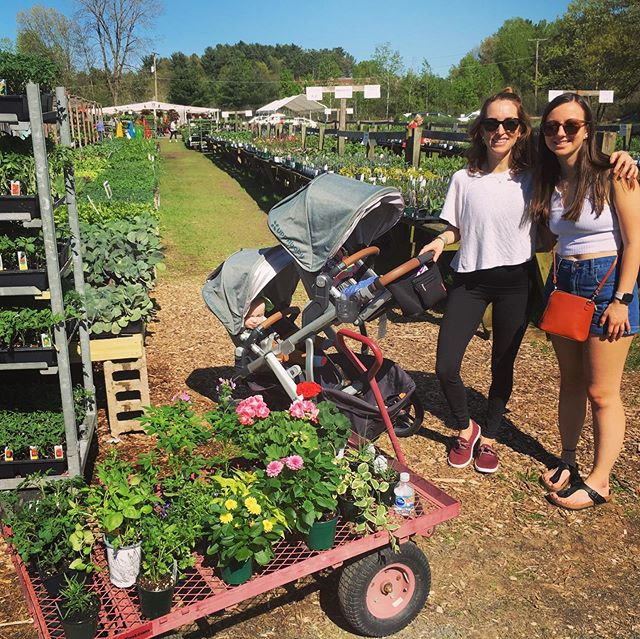 This weekend we planted our garden at Bluebird for the second year (flowers in the window boxes, veggies in the back)  We were excited to have another helper here to share in the experience with us. #goddaughter