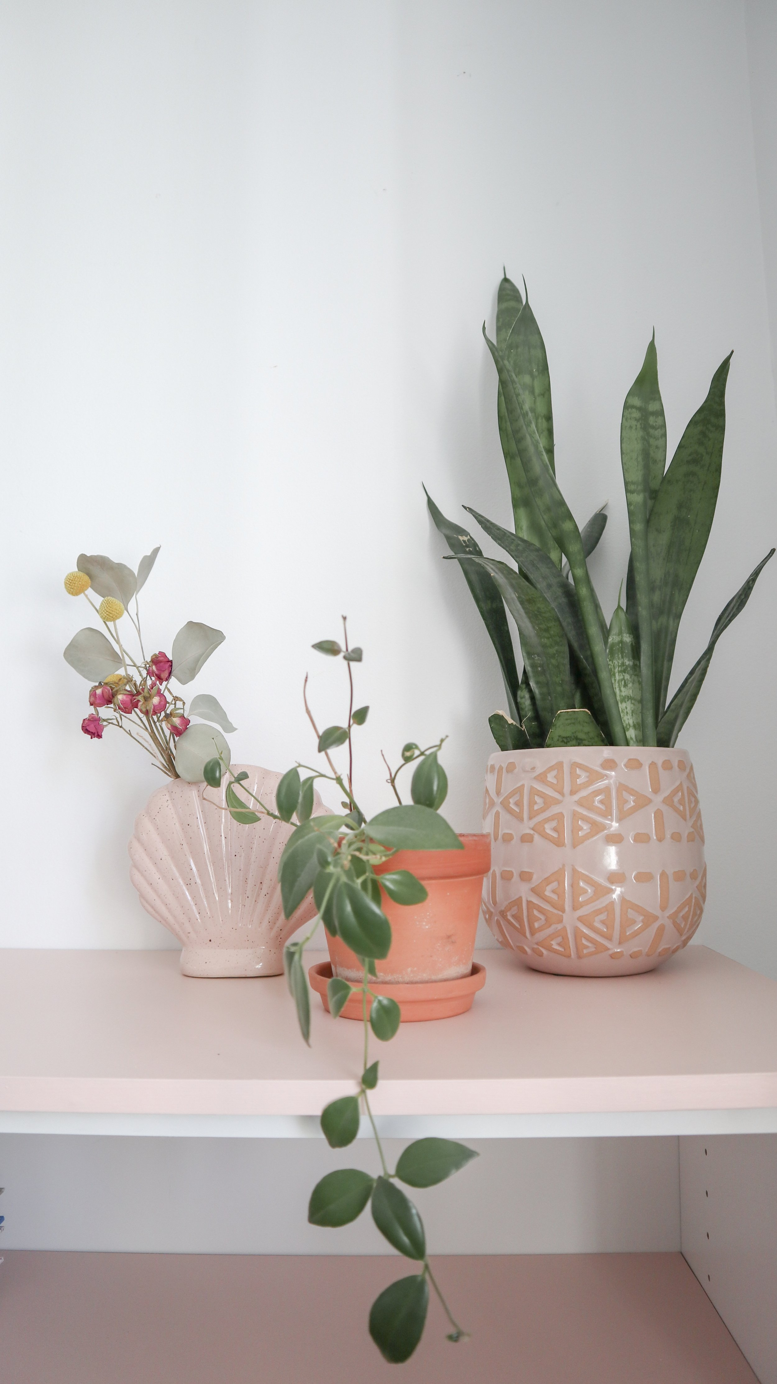 Blush and terracotta color combo from Fleur maison