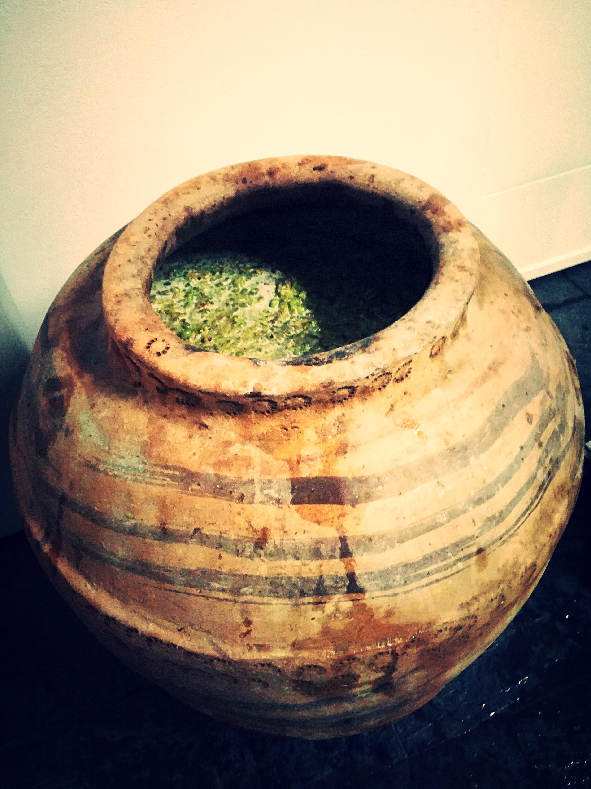 Macerating Verdejo inside Spanish dolia/amphora