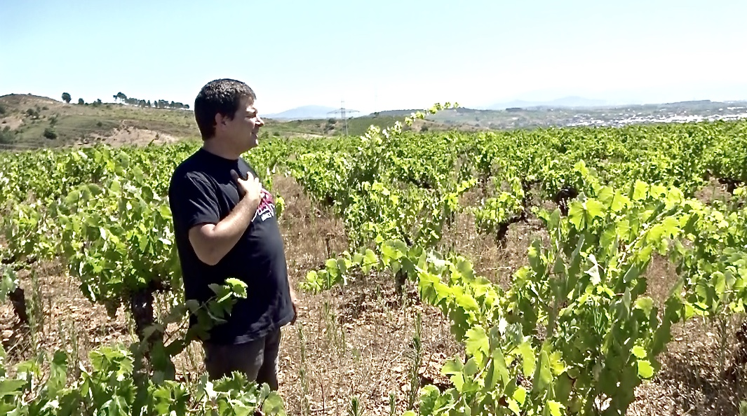 Jesús in mixed planting, 120+ year old vineyard (Bierzo)
