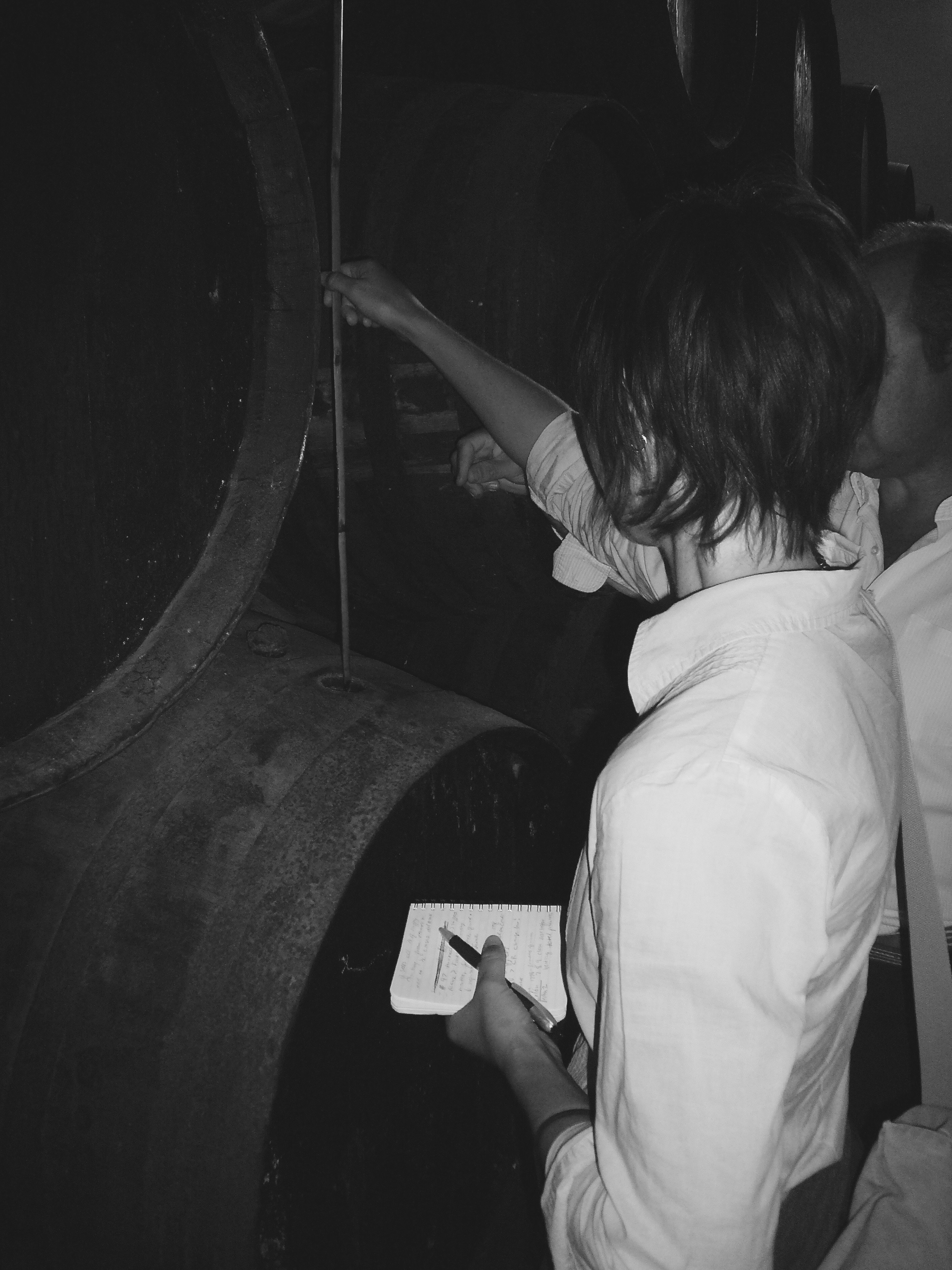 Learning the distinction between extracting samples in Sanlúcar v. Jerez at La Cigarrera | Sanlúcar de Barrameda (Sept. 2009)