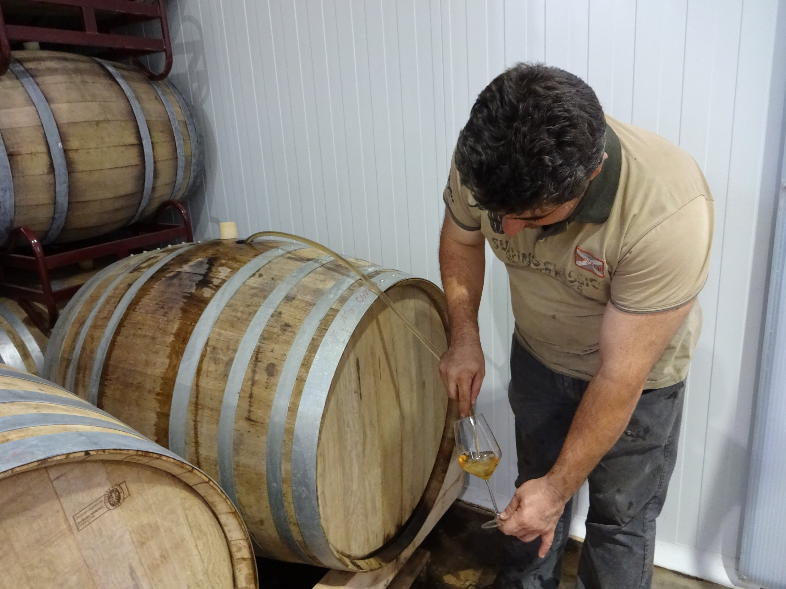 Samuel extracting a rare sample of Salvaje. Two barrels of this solera exist.