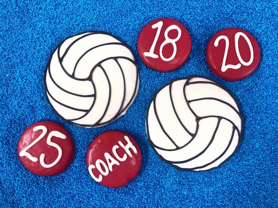 volleyball birthday party.jpg