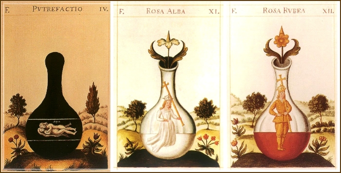 Nigredo, Albedo, Rubedo Stages of Alchemy