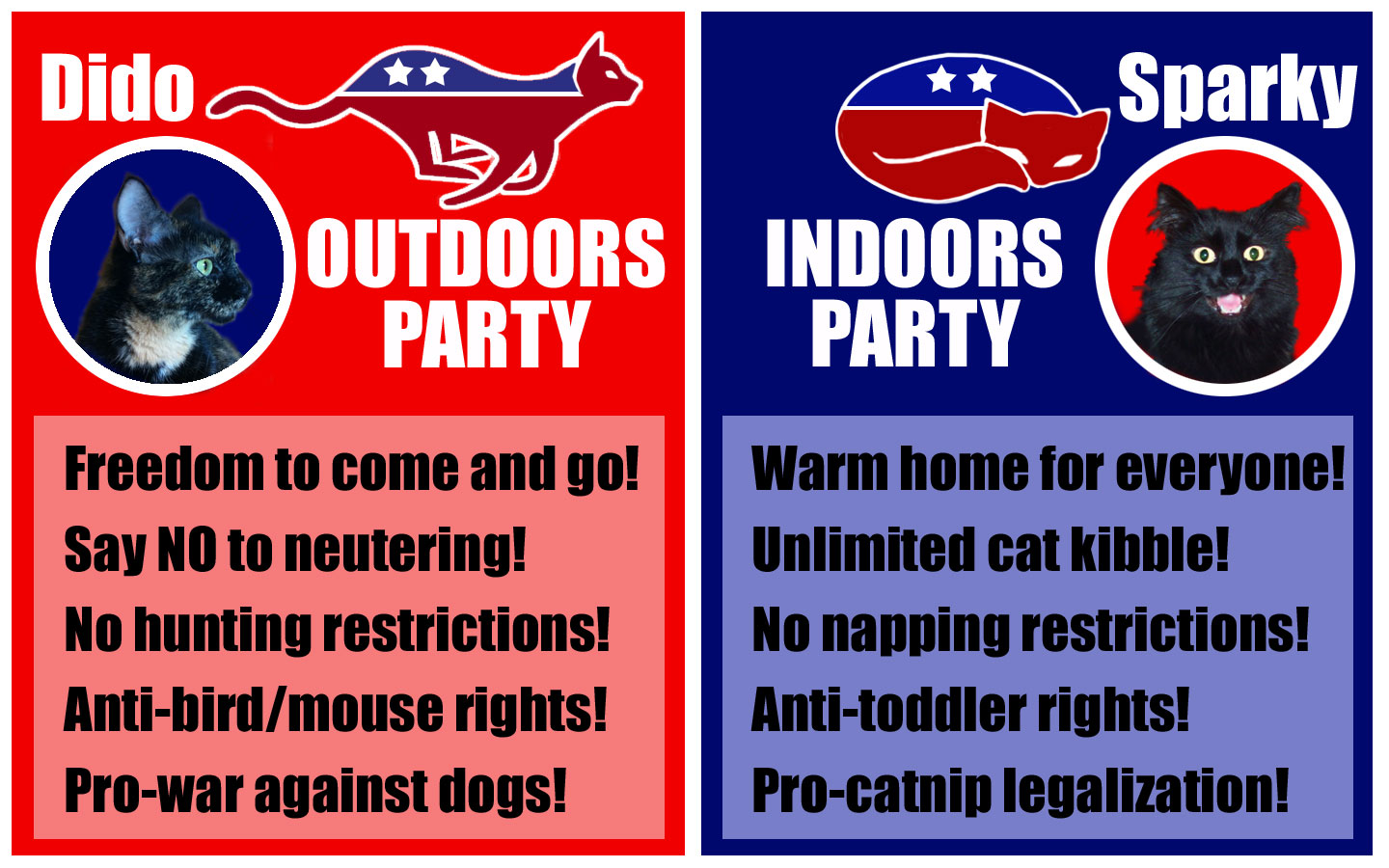 Although I don't agree with all their views, I love both kitties! Same thing with all my friends and family.    I want to help all of them understand their opponents' point-of-view in a supportive and loving way. Knowledge is power!